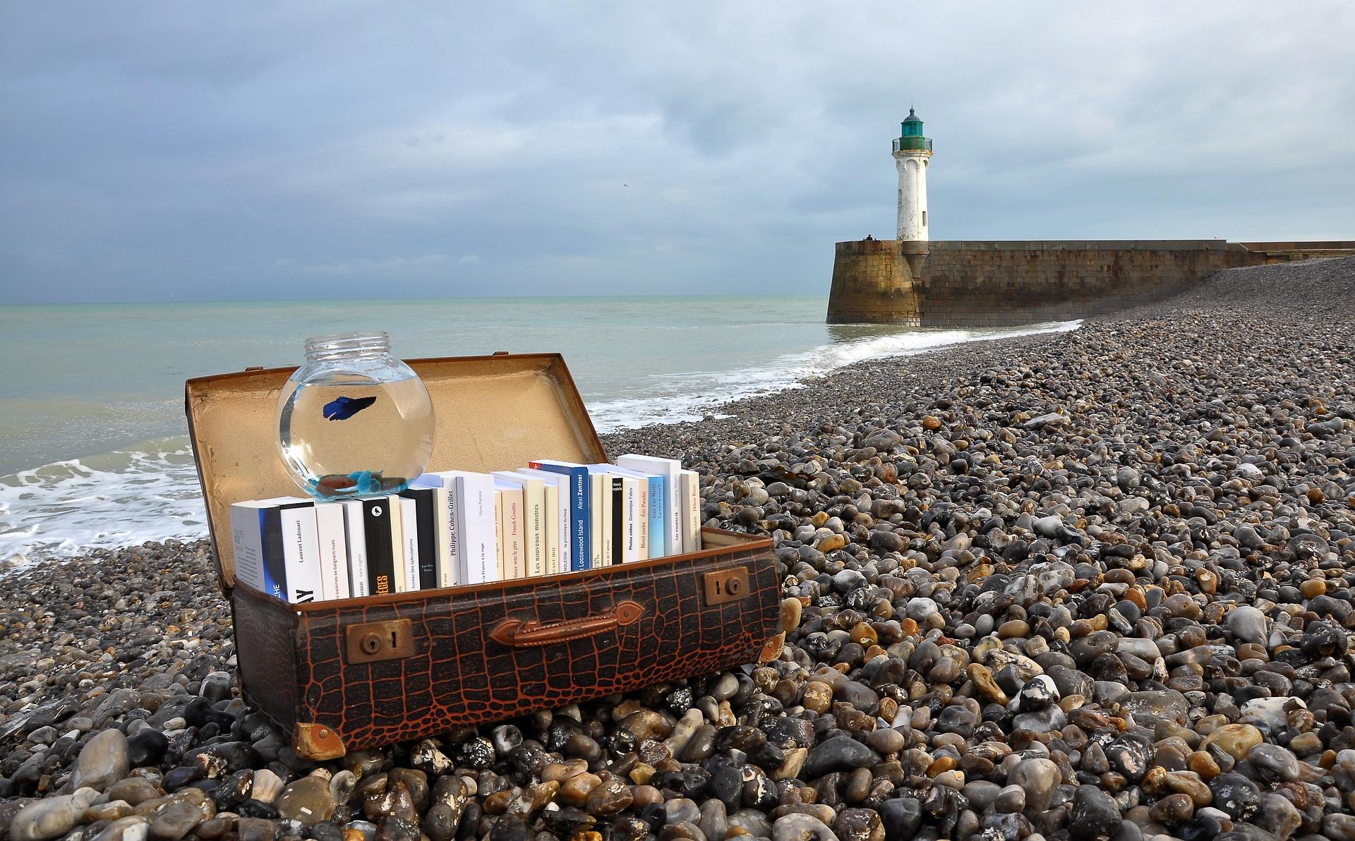 Una valigia piena di libri
