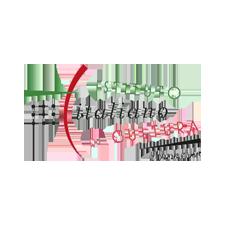 IIC Istituto Italiano di Cultura Copenaghen